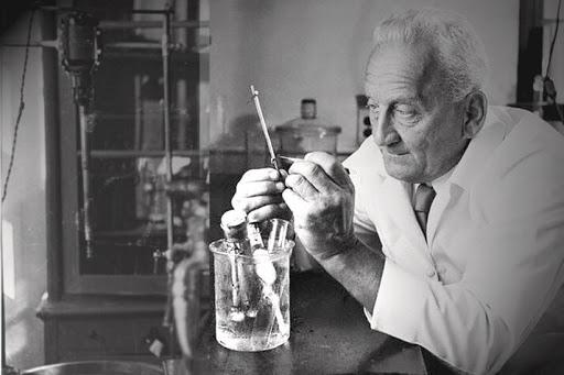 Szent-Györgyi Albert: Az anyag élő állapota